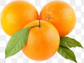 Orange Picture - Orange Clip Art PNG
