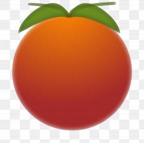 Orange Fruit - Mandarin Orange Tangerine Lemon Citron Fruit PNG
