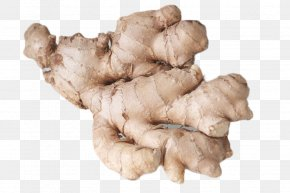 HD Closeup Of Ginger - Ginger Eating Food Health Nausea PNG