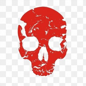 Red Skull - Red Skull Human Skeleton Bone PNG