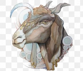 Donkey - Goat Drawing Concept Art Illustration PNG