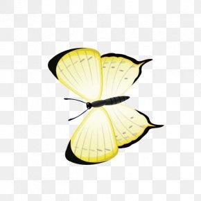 Butterfly,Yellow Butterfly - Butterfly Yellow Computer File PNG