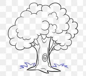 Cartoon Tree - How To Draw Trees Drawing Cartoon Sketch PNG