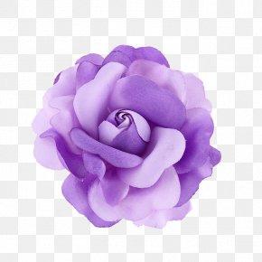 Purple Flower - Violet Purple Flower PNG
