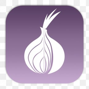 Onion - Tor .onion Web Browser Onion Routing PNG