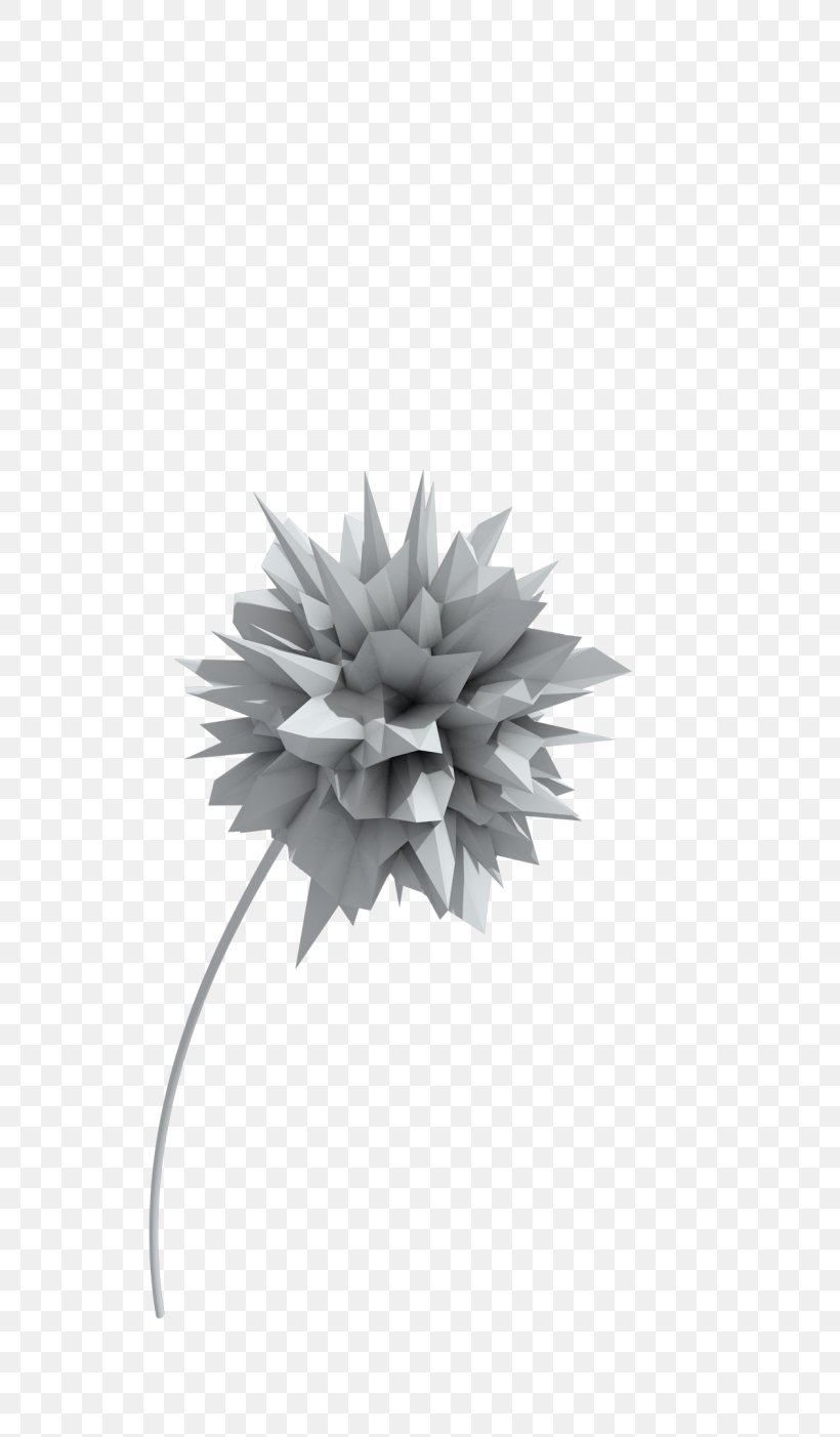 Real Editors Atom 1080p Editing Png 748x1403px 4k Resolution Atom Black And White Editing Flower Download