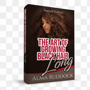 Hair - Black Hair Afro-textured Hair Long Hair Hairstyle PNG