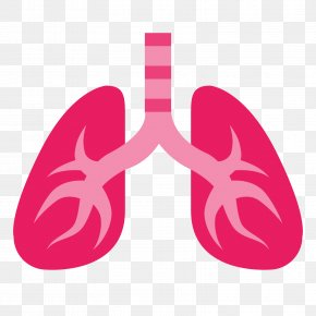 Lungs - Lung PNG