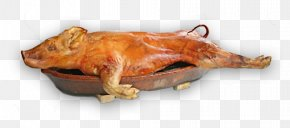 Pig - Suckling Pig Pig Roast Barbecue Pig's Ear PNG