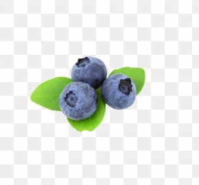 Blueberry Eye Protection - Blueberry Blackberry Fruit PNG