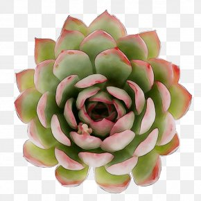 Cut Flowers Artificial Flower PNG