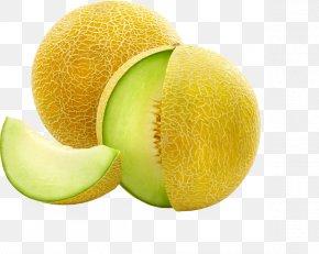 Melon - Galia Melon Cantaloupe Honeydew Canary Melon PNG