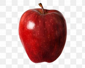 Red Apple - Apple Red Delicious Honeycrisp Orchard PNG