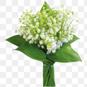 Lily Of The Valley - Flower Bouquet Lily Of The Valley Clip Art PNG