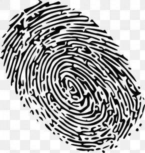 Fingerprint Picture - Fingerprint Clip Art PNG