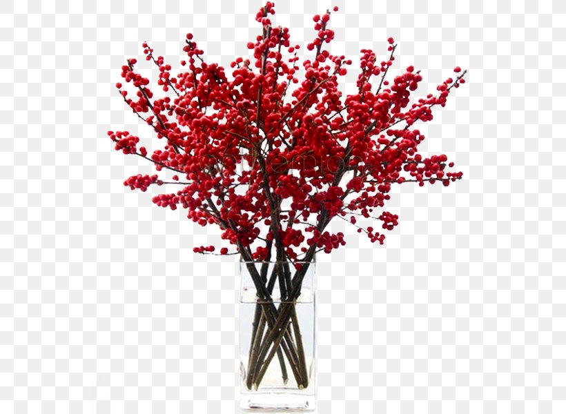 Name Day Flower Christmas Red Holiday Png 600x600px Name Day Branch Christmas Color Cut Flowers Download