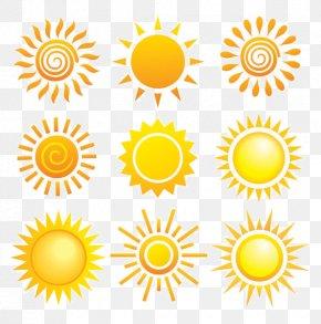 Vector Sun - Sun Euclidean Vector Royalty-free Clip Art PNG