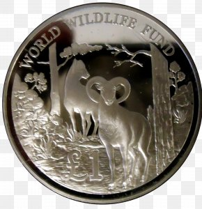 Silver - Silver Coin Money Medal Currency PNG