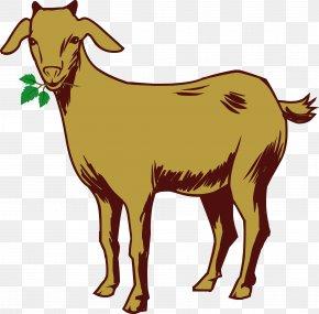 Goat - Kinder Goat Sheep PNG