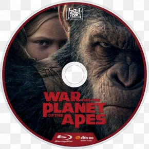 Actor - Planet Of The Apes Film Thriller Actor 4K Resolution PNG