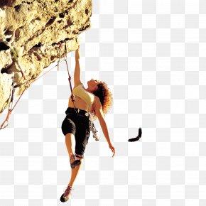 Woman Rock Climbing - Rock Climbing Icon PNG