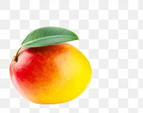 Hainan Australia Mans - Australia Tobacco Pipe Cannabis Fruit Apple PNG
