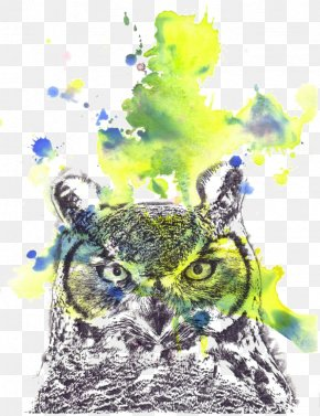 Owl - Owl Sloth Watercolor Painting PNG