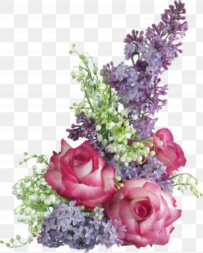 Lilac Flower - International Women's Day 8 March Animaatio Holiday PNG