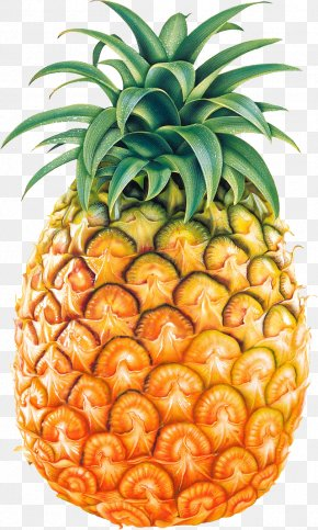 Pineapple Fruit Image - Pineapple Clip Art PNG
