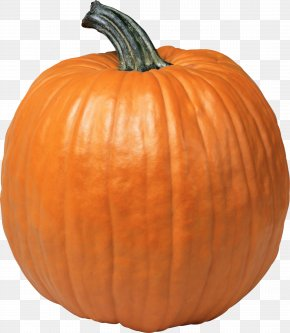 Pumpkin PNG Image - Pumpkin Pattypan Squash Jack-o'-lantern PNG