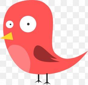 Bird Cartoon - Bird Piracy Clip Art PNG