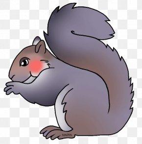 Squirrel - Eastern Gray Squirrel Rodent North Carolina Clip Art PNG