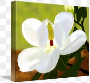 Painting - Moth Orchids Art Digital Painting Photo Manipulation PNG