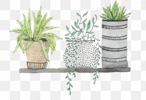 Hand Painted Green Plants - Watercolor Painting Drawing Download Illustration PNG