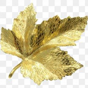 Gold Leaf - Canada Brooch Gold Maple Leaf PNG