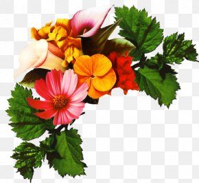 Perennial Plant Floristry - Bouquet Of Flowers Drawing PNG