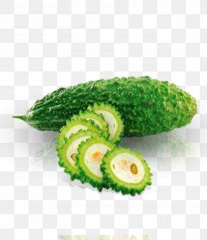 Bitter Melon - Bitter Melon Organic Food Vegetable Cucurbitaceae PNG