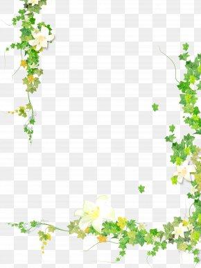 Plants - Clip Art Plants Borders And Frames Image Leaf PNG