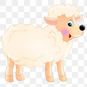 Sheep - Sheep Cattle Goat Dog Mammal PNG