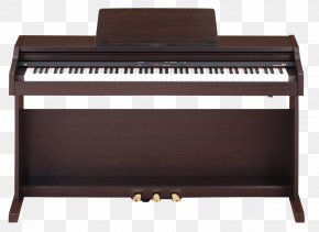 Piano - Digital Piano Roland Corporation Keyboard Electric Piano PNG