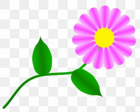 Gerbera Daisy Clipart - Flower Common Daisy Free Content Clip Art PNG