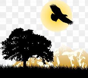The Eagle Under The Sunset - Durham Pousada Pompeia Park West Cafe & Deli Inn Rio Do Peixe PNG