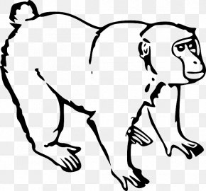 Line Drawing - Monkey Ape Drawing Clip Art PNG