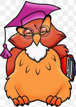 Owls - Teacher School Cartoon Clip Art PNG