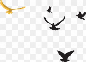 Distance Cliparts - Bird Distance Flock Clip Art PNG