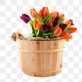 Cask Color Tulips - Flower Bouquet Floristry Tulip International Womens Day PNG