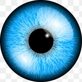 Eyes 5 - Eye Clip Art PNG