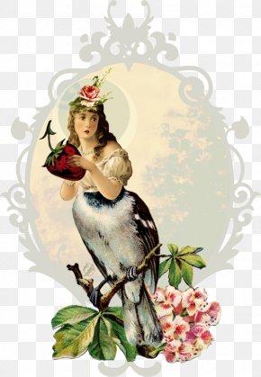 Little Birds - Collage DeviantArt Floral Design Work Of Art PNG
