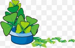 A Pot Clover - Shamrock Saint Patricks Day Clip Art PNG