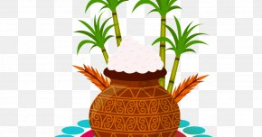 Greeting Elements - Thai Pongal Makar Sankranti Bhogi Wish Greeting & Note Cards PNG